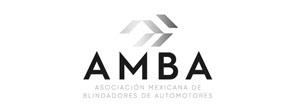 amba_290